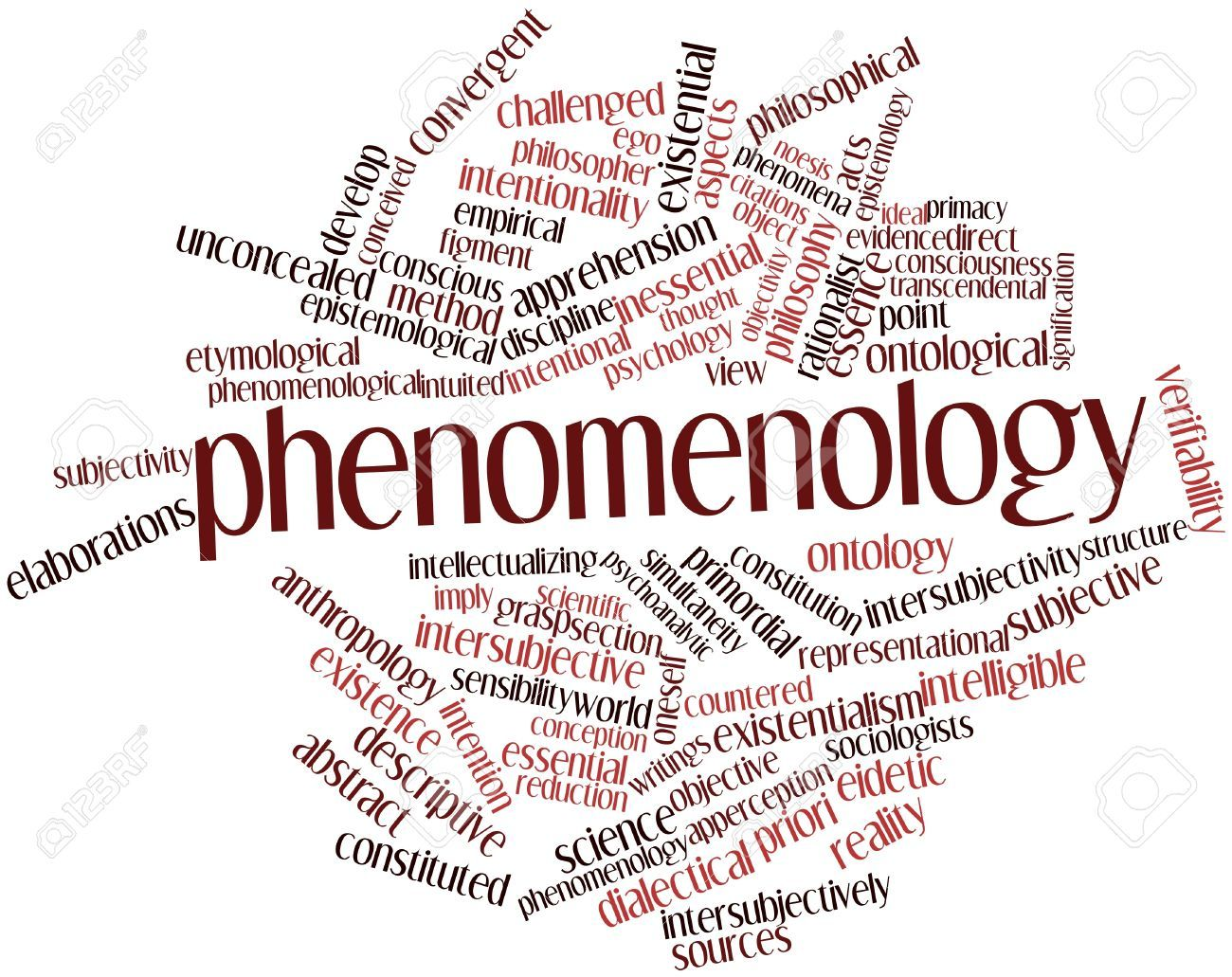 Phenomenology and Computer Science